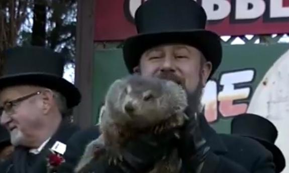 groundhog doesn't see shadow
